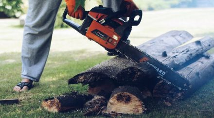 Does A Chainsaw Need To Warm Up?
