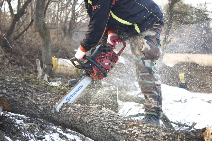 Is cutting wet wood bad for chainsaw? 2