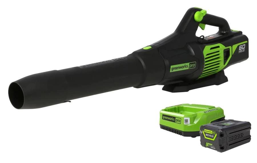 Electric vs. Gas Leaf Blowers: What Do You Choose? 2