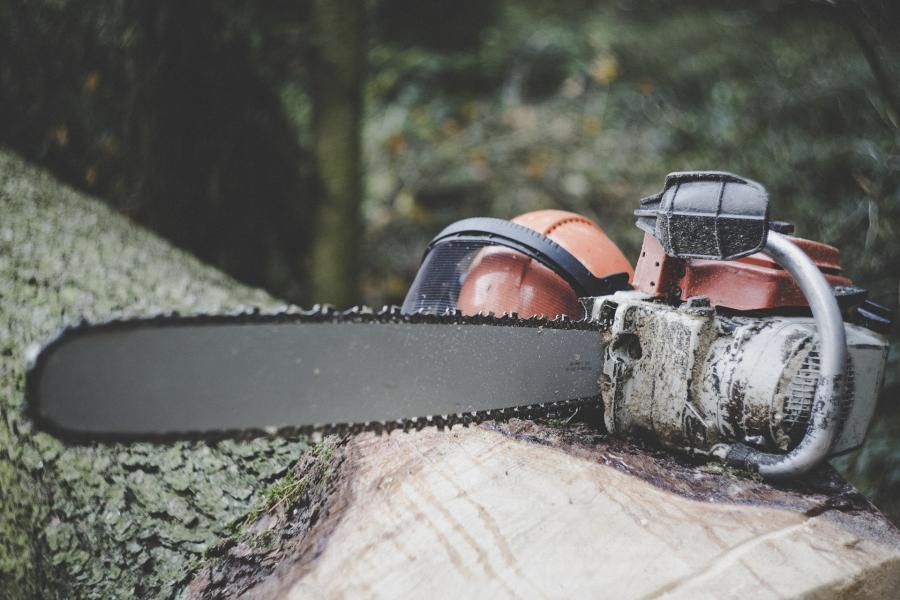 Gas Vs. Electric Chainsaws- Which Is Better For You? 4