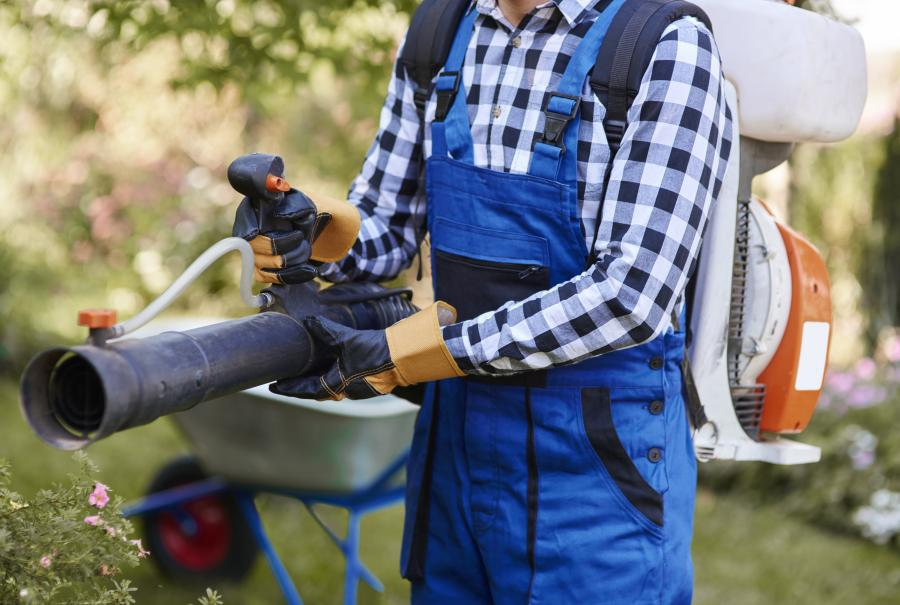 8 Reasons your leaf blower won't rev + how to fix 1
