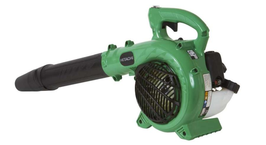 Best Leaf Blowers For Removing Acorns 2