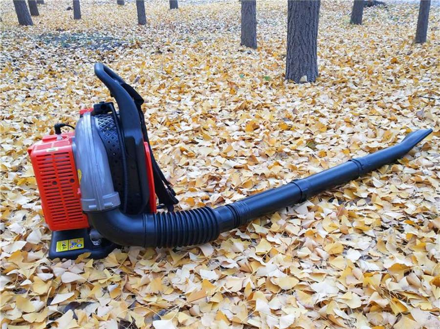 How to Fix a Leaf Blower That Won't Idle 1