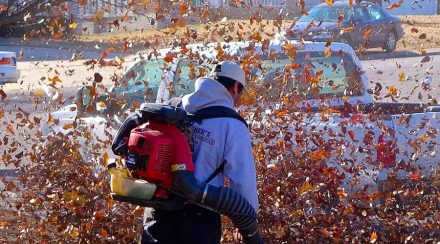 Leaf blower buying guide: 14 things to look for (with checklist)