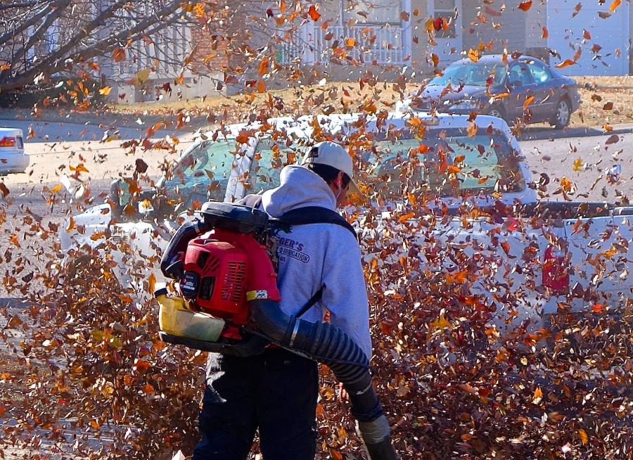 Leaf blower buying guide: 14 things to look for (with checklist) 3