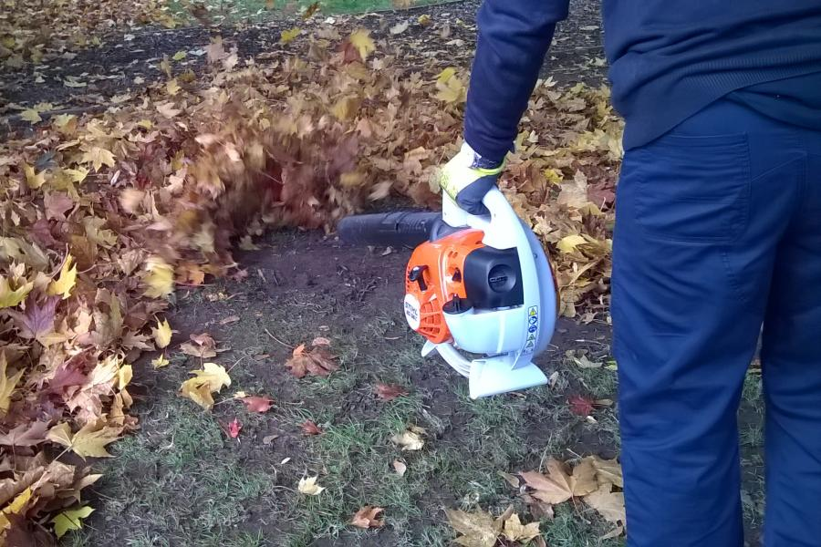 Leaf blower buying guide: 14 things to look for (with checklist) 6