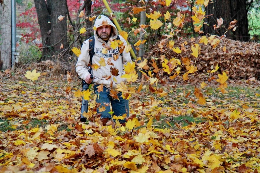 Leaf blower buying guide: 14 things to look for (with checklist) 7