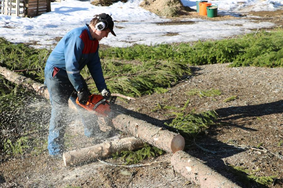 How to Use A Chainsaw: Follow These Steps, with video 1