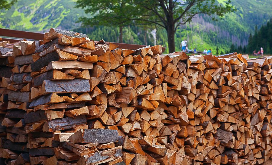 How Long Does It Take To Dry Wood? 1