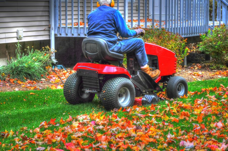 Mulching With a Lawn Mower: This Is How You Do It 1
