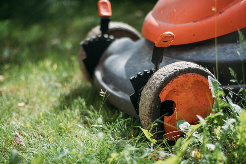 How to Use Fuel Stabilizer in a Lawnmower 2