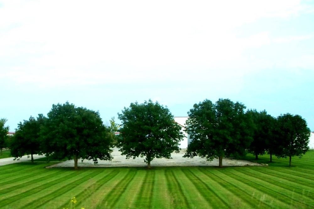 How to Stripe a Lawn with a Riding Mower, this is how to do it 1