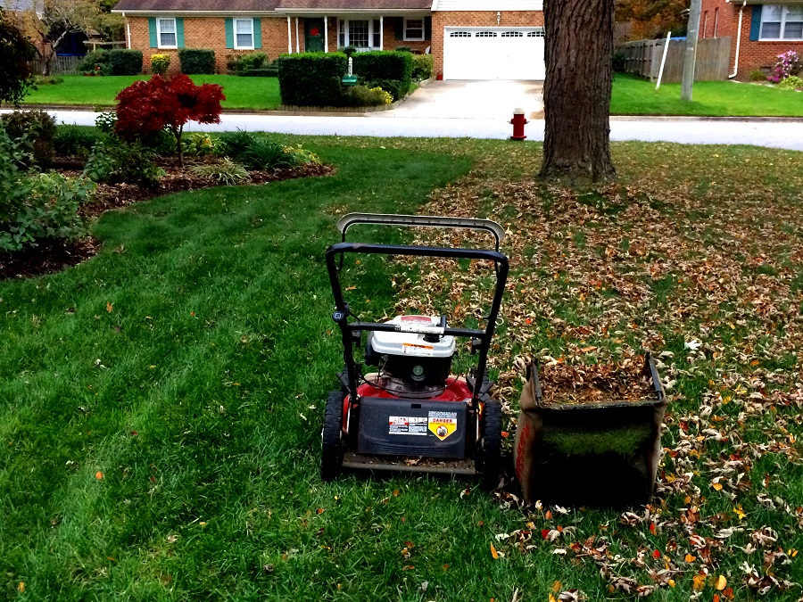 How to pick leaves with a lawnmower, two methods explained 2