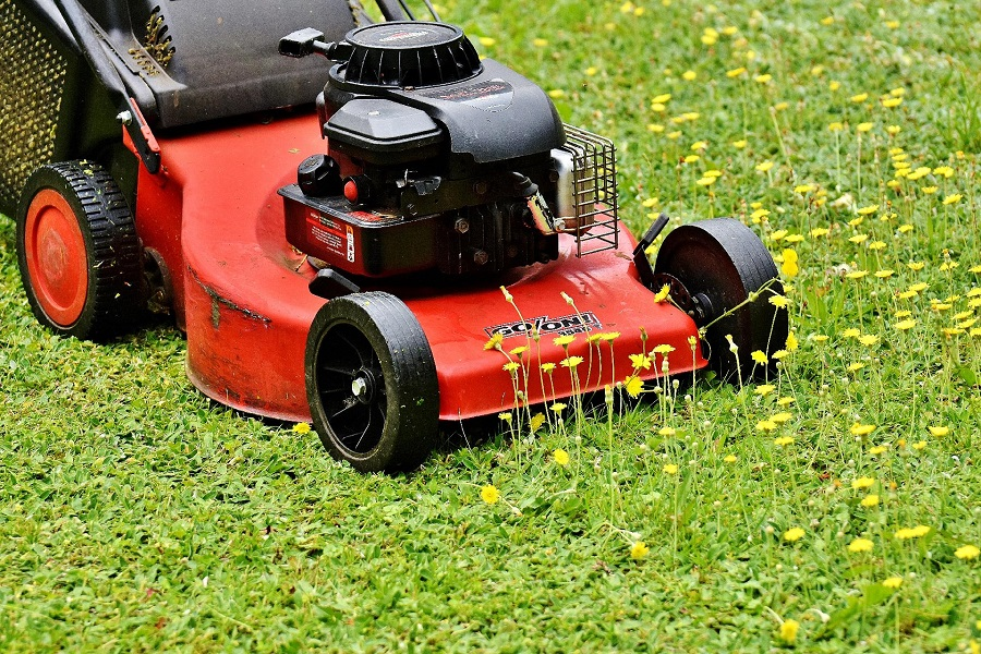 How to Drain Gas from a Briggs & Stratton Lawnmower, the best three methods 1