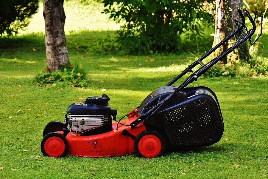 How to Start a Lawnmower without Primer Bulb, step by step 1