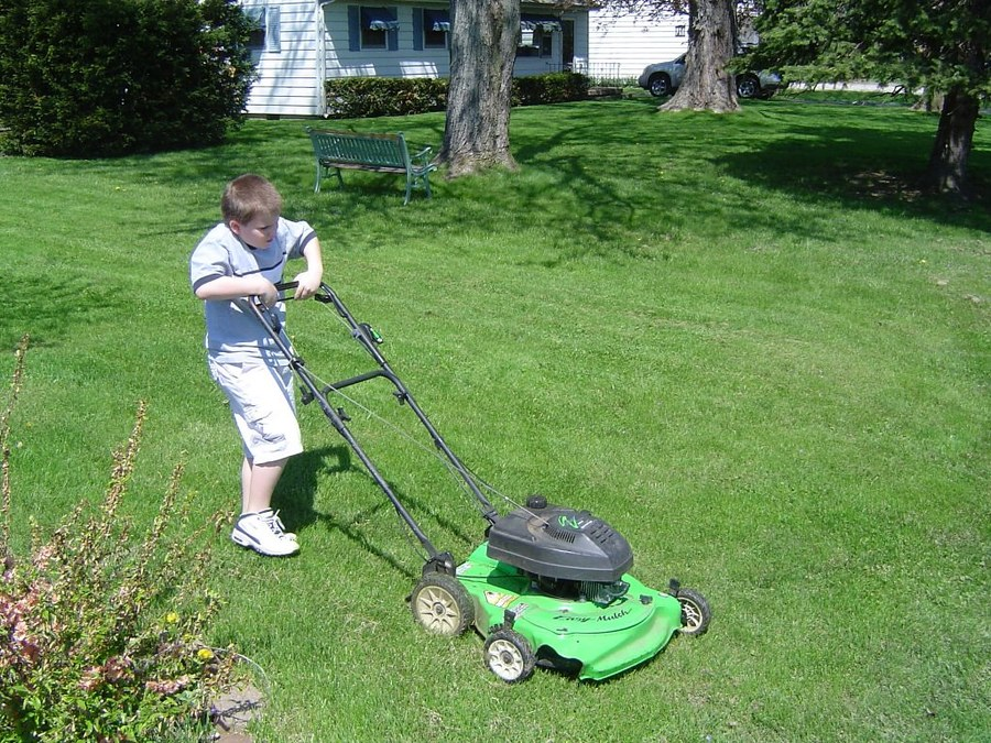 How to Start a Lawn boy Self-Propelled Lawnmower 1