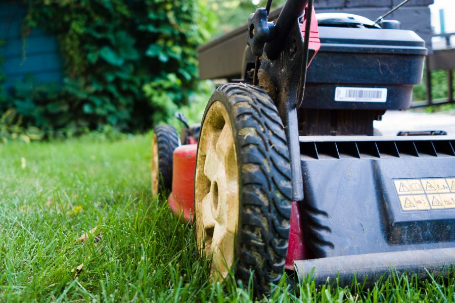 Mowing height, what is the best height for your grass type? 1