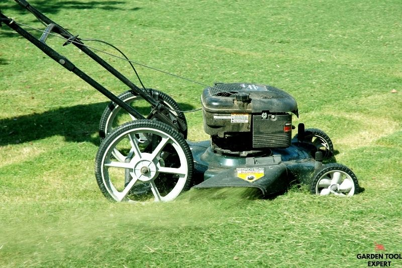 Mowing Without a Bag, what is the best way? 1