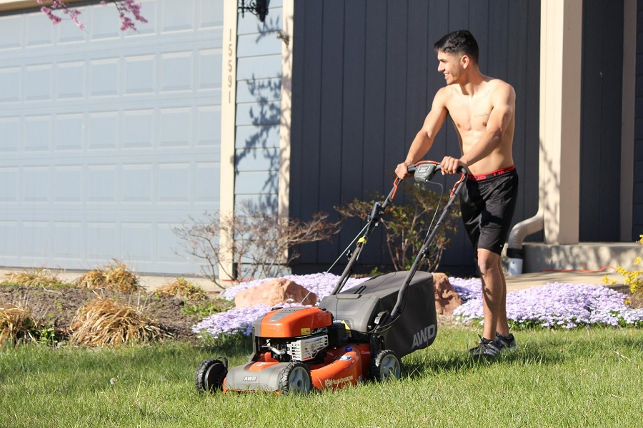 Mowing bag or mulch, what is the best method? 1