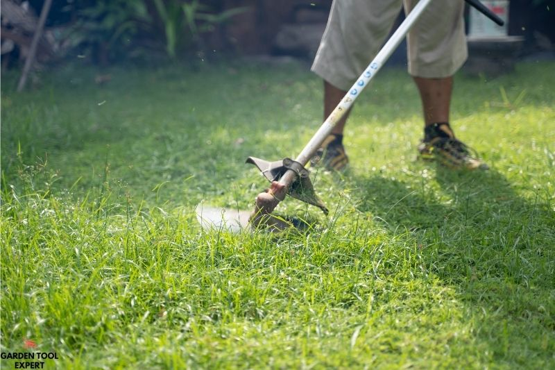 Mowing Height for Winter, 9 things you should know 1