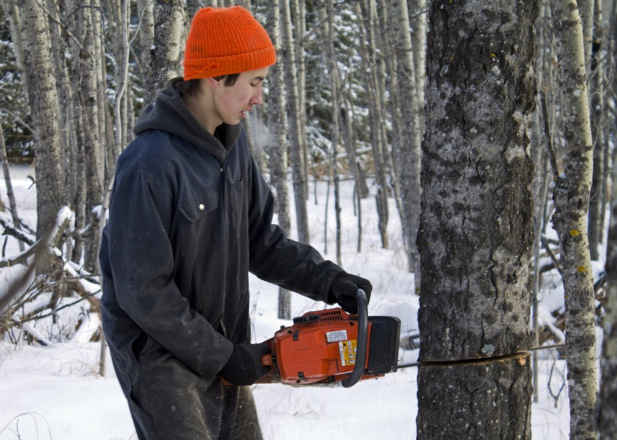 Chainsaw Over-Revving: Tips from a Professional 1