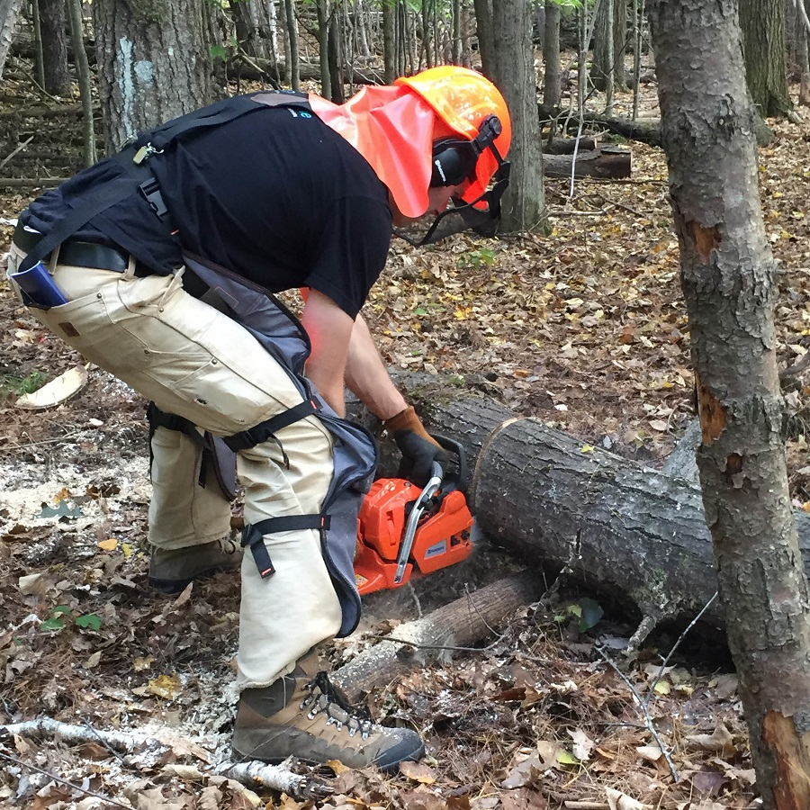 Chainsaw Not Cutting Straight: Tips from a Professional 1