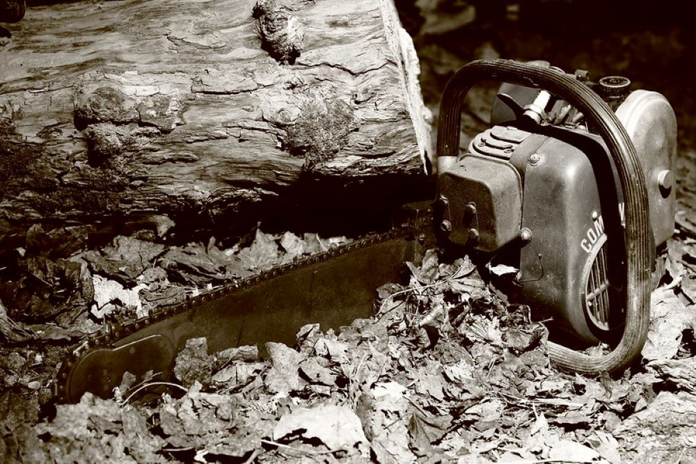 Chainsaw Locked Up: Tips from a Professional 1